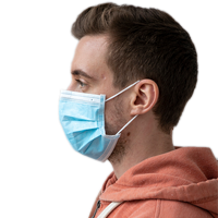 Mouth and nose protector/FFP2